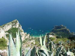 Capri View