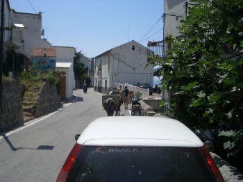 Amalfi Coast Road